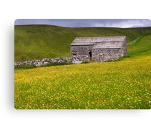Summer meadow - The Yorkshire Dales Canvas Print