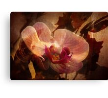 The Poetry Of Florist's 2 Canvas Print