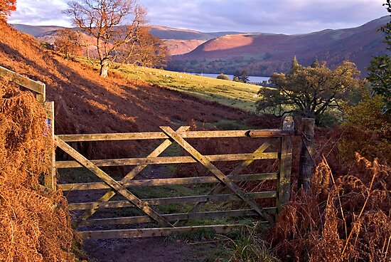 Near Ullswater - The Lake District by Dave Lawrance