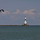 Conneaut West Breakwater Lighthouse by Monnie Ryan
