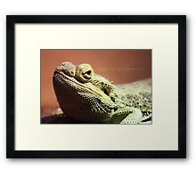 See Into My Eyes. Framed Print