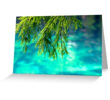 Cypress Leaves Greeting Card