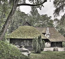 Dracula's Hut by stoneinfocus