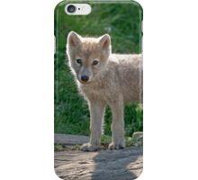 Arctic Wolf Pups  iPhone Case/Skin