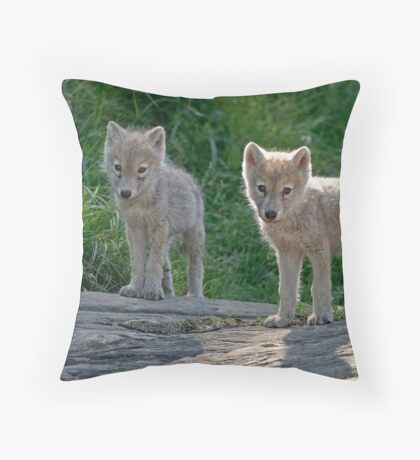 Arctic Wolf Pups  Throw Pillow