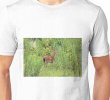 Wekiwa State Park August Fawn Unisex T-Shirt