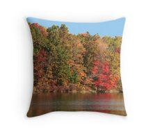 Color show Throw Pillow