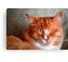 Mitso Sleeping Canvas Print