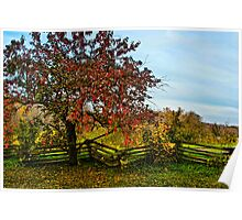 APPLE TREE & SPLIT RAIL FENCE Poster