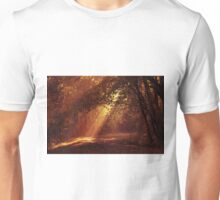 Light Meets the Dark T-Shirt