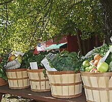 Fresh from the Farm Groceries by Margie Avellino