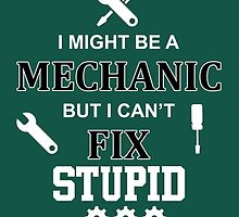 i might be a mechanic but i can't fix stupid by comelyarts