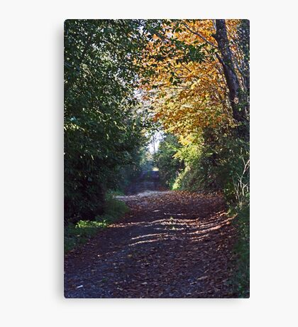 Walk with Me Canvas Print