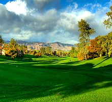 DOWN THE FAIRWAY by stuartphotos
