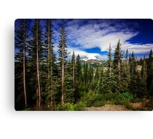 Mt Rainier Landscape Canvas Print