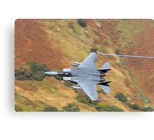 F-15 Eagle Canvas Print