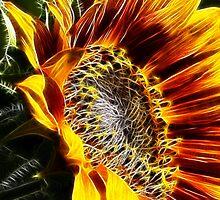 Fractalius Sunflower VI by B.L. Thorvilson