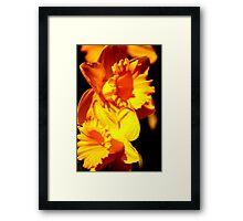 Fleurs Abstract 10 Framed Print