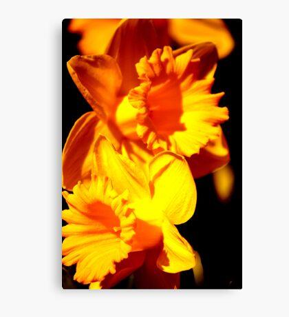 Fleurs Abstract 10 Canvas Print