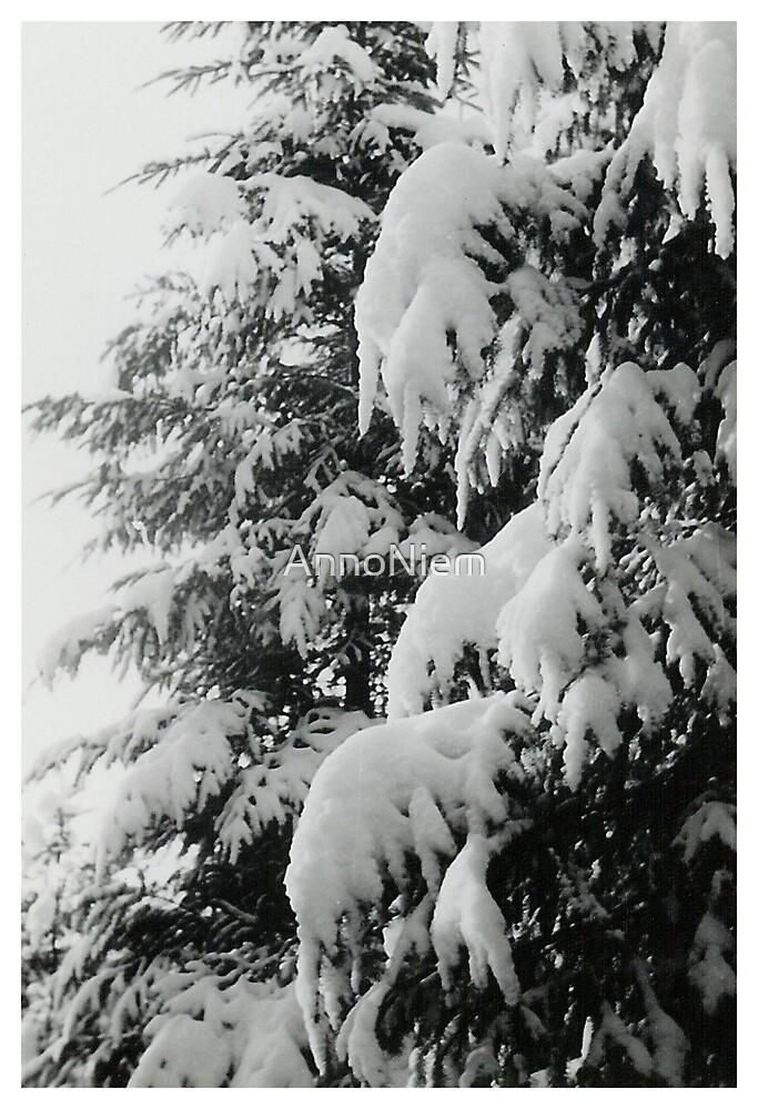 Oldskool Winter by AnnoNiem
