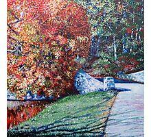 'Autumn Blaze' Photographic Print