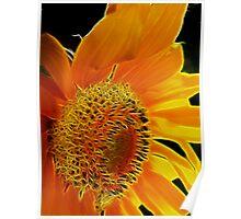 Fractalius Sunflower I Poster