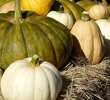 pumpkins on a hay bale by tego53