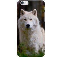 Arctic Wolf iPhone Case/Skin