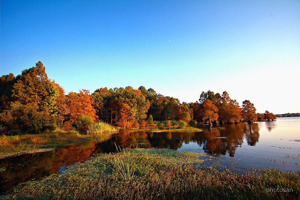 Goose Lagoon - Mac's Landing by photosan