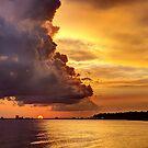 Beautiful Glow by Jonicool