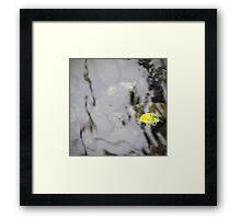 Along Silken Waters Framed Print