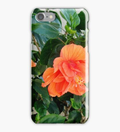 MY PEACH COLORED WORLD iPhone Case/Skin