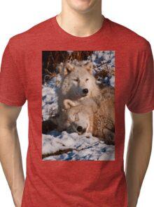 Sleep Little One, I'll Be Watching Tri-blend T-Shirt