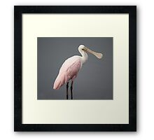 Soft Framed Print