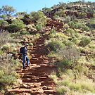 HALFWAY UP! to plateau of Kings Canyon N.T. by Rita Blom