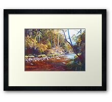Shadows on the Howqua Framed Print