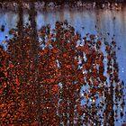 Rusty Dumpster by sedge808