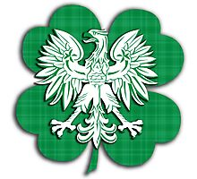 Irish Polish Shamrock Heritage  Photographic Print