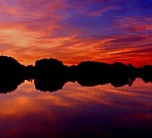 The Water Is at One With the Sky by Tim Scullion