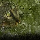 Moggy Goes Hunting by Geraldine (Gezza) Maddrell