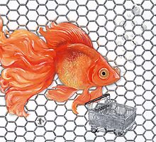 Attention Gold Fish Shoppers by ArtbyJoShmo