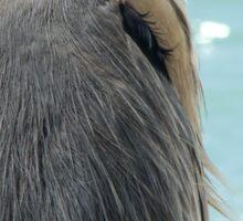 Barry the Blue Heron Sticker