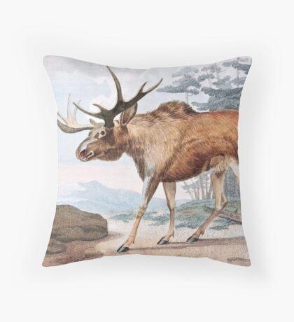 Bull Moose Vintage Drawing Throw Pillow