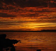 15-10-2010 Morning Tuggerah Lakes. by Warren  Patten