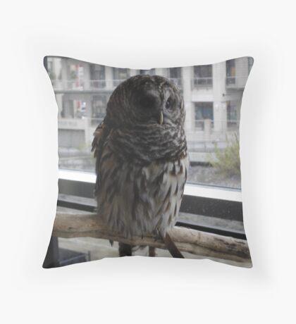 Wisdom for the Taking Throw Pillow