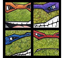 Teenage Mutant Ninja Turtles TMNT Photographic Print