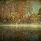 Old Reflections by Annie Lemay  Photography