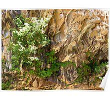 stunning rock wall - Katherine gorge Poster