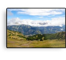 Pra loup in Alps Metal Print