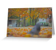 Golden Morning -  Add a touch of sunlight - (CNN News) Fri Oct 15  by Brown Sugar. Views (87) pls... cu18r  !!!  Greeting Card